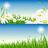 Векторный клипарт: Летом набор