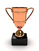 Photo 300 DPI: Awarding cup