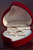 Two wedding rings in nice red box | Stock Foto