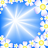 blue background with white flowers