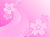 flowers on pink background