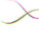 Vector clipart: colour lines