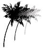 Three black silhouettes of palm trees