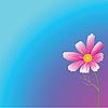 Векторный клипарт: Розовый цветок.