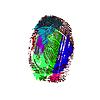 Векторный клипарт: отпечаток указательного пальца.