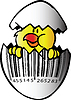 Vector clipart: Yellow chicken in egg