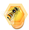 Vector clipart: bee and honey