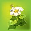 Векторный клипарт: пчела на цветке