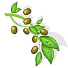 Vector clipart: olive branch