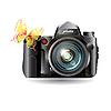 Векторный клипарт: бабочка и фотокамера