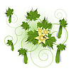 Vector clipart: cucumber