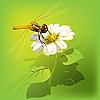 Векторный клипарт: Стрекоза на цветок