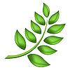 Vector clipart: green branch