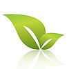 Vector clipart: green sheet