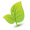 Vector clipart: plant