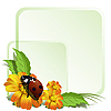 Vector clipart: Ladybird and flowers