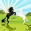 Vector clipart: pair of the horses