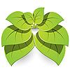Vector clipart: plant