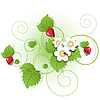 Vector clipart: berries and leaves of strawberry