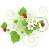 Векторный клипарт: ягоды и листья земляники