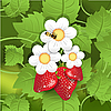 Vector clipart: strawberry and bee