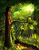 Forest | Stock Illustration
