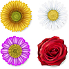 ID 3184214 | Set of flowers | Stock Vector Graphics | CLIPARTO