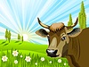 Vector clipart: Cow in field
