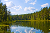Lake in the forest | Stock Foto