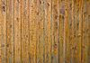 Photo 300 DPI: Old wooden plank background with nails