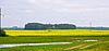 ID 3098298 | Road through the rape field | High resolution stock photo | CLIPARTO