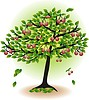 Vector clipart: fruit tree with leaves and cherry