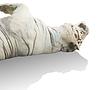 Leżącego rzadki biały tygrys | Stock Foto