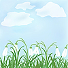 Vector clipart: Spring snowdrop flowers against sky