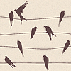 seamless pattern with birds on wires