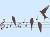 Vector clipart: music notes and birds