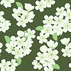 Векторный клипарт: бесшовные модели с яблоком цветы
