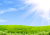 Green grass and sky | Stock Illustration