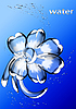 Flower of water drops | Stock Illustration