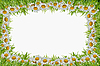 Photo 300 DPI: frame of camomiles