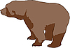 Photo 300 DPI: Wild brown bear