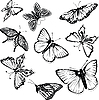 Vector clipart: Set of black and white butterflies