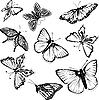 Векторный клипарт: Набор черных и белых бабочек