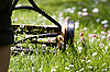 Photo 300 DPI: Hand lawn mower