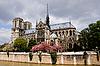 ID 3113993   Notre Dame de Paris   High resolution stock photo   CLIPARTO