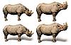 Rhino | Stock Foto
