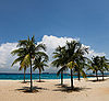 Tropical beach | Stock Foto