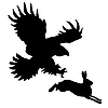 silhouette of ravenous bird attacking hare