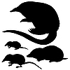 Vector clipart:  silhouette of the mole, mouse and desmans