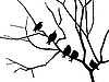 Vector clipart:  silhouette starling on branch tree